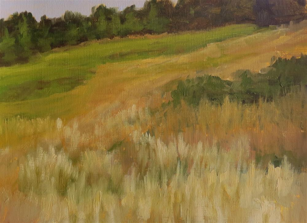 """Amber Waves Of Grain"" original fine art by Pam Holnback"