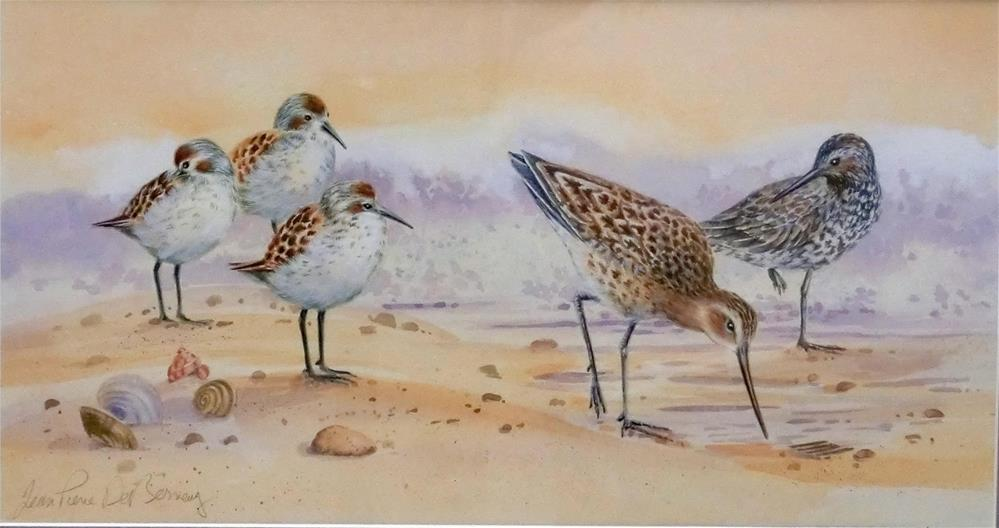 """Shore birds III, framed"" original fine art by Jean Pierre DeBernay"