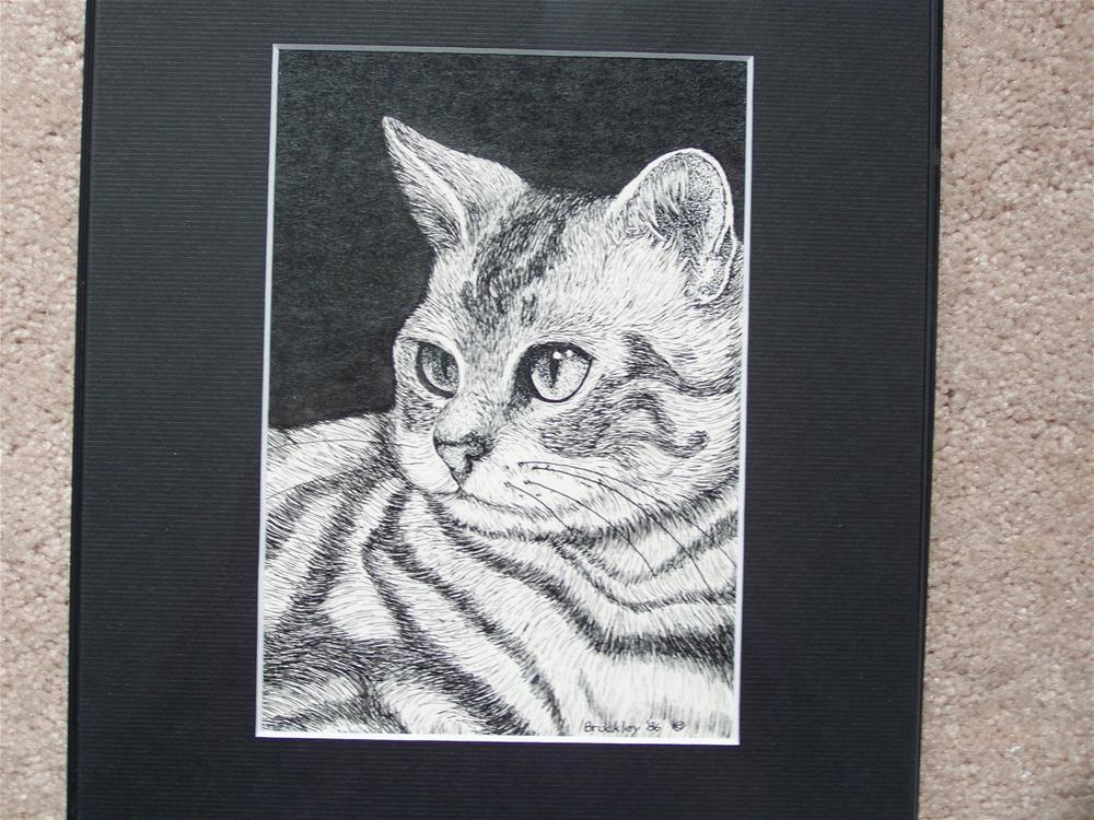 """Silver Tabby"" original fine art by Elaine Shortall"