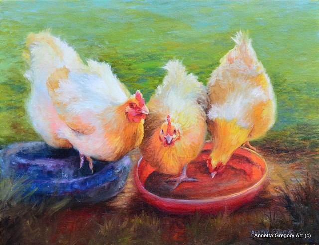 """""""Golden Buffingtons"""" original fine art by Annetta Gregory"""