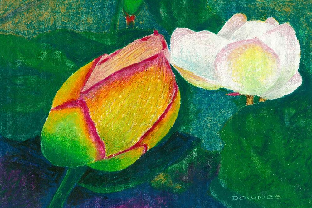 """074 WATERLILLY 7"" original fine art by Trevor Downes"