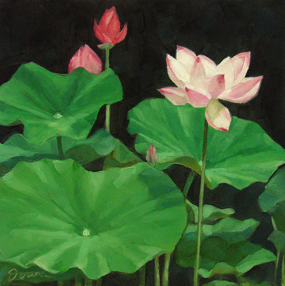 """Water Lilies"" original fine art by Joanna Bingham"