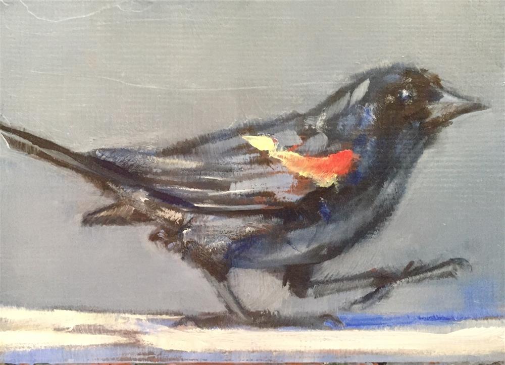 """""""Red-winged Blackbird"""" original fine art by Gary Bruton"""