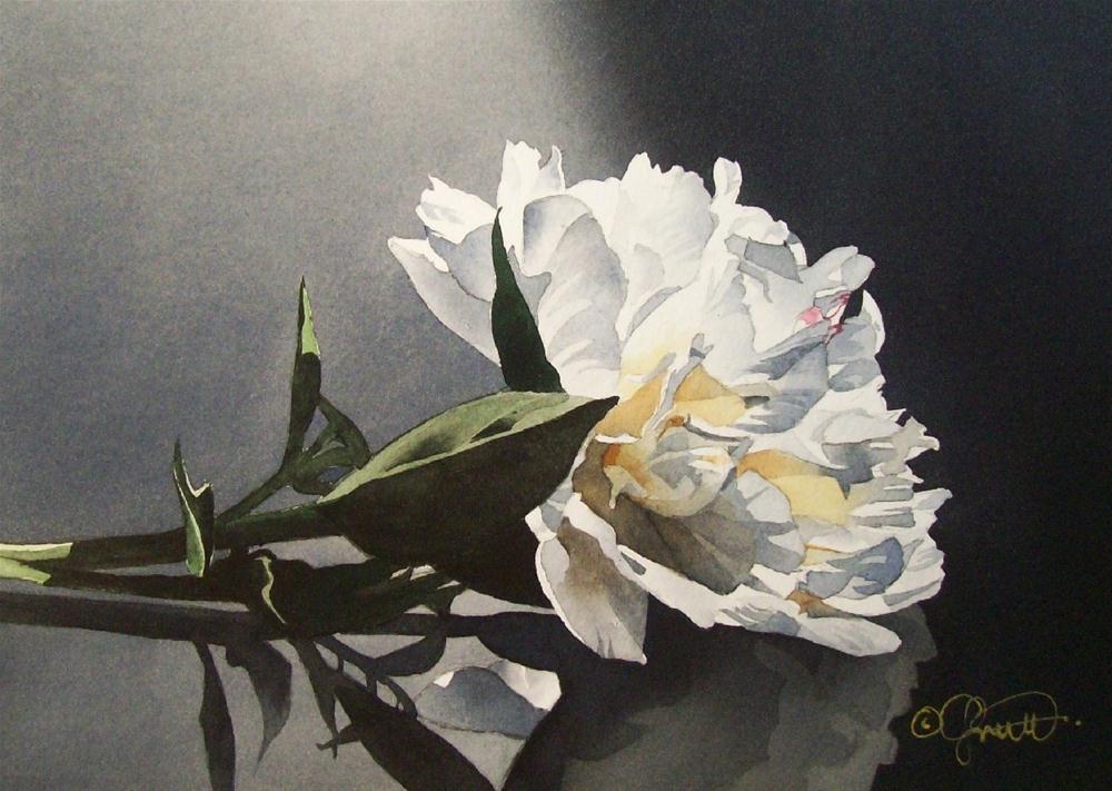 """Spotlight Peony"" original fine art by Jacqueline Gnott, whs"