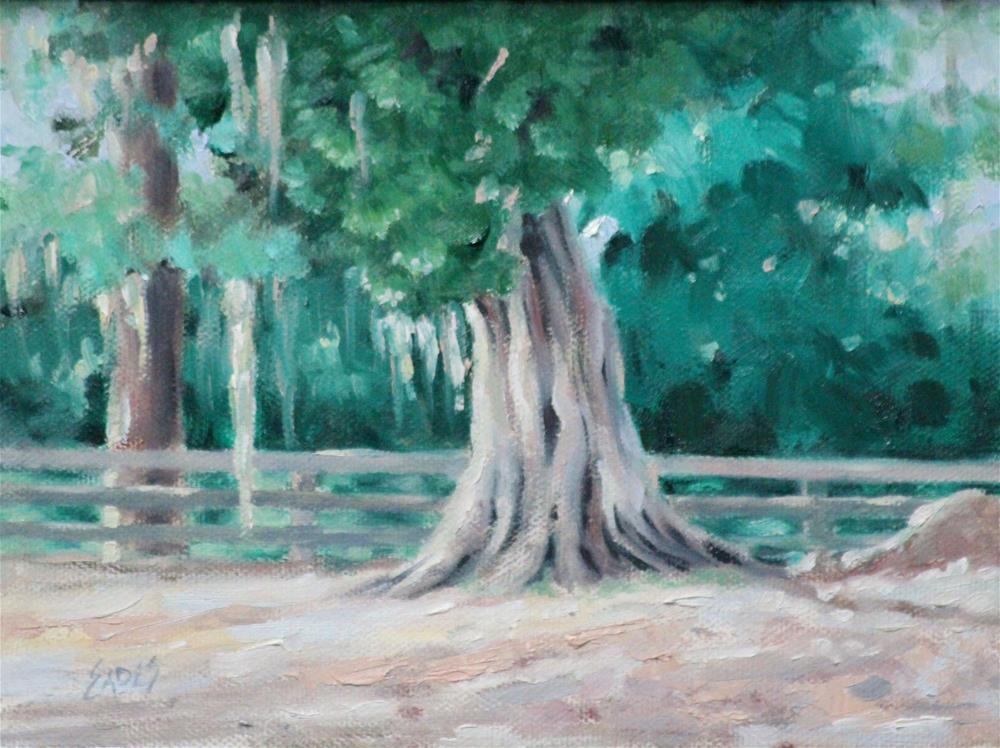 """Eden's Cedar"" original fine art by Linda Eades Blackburn"