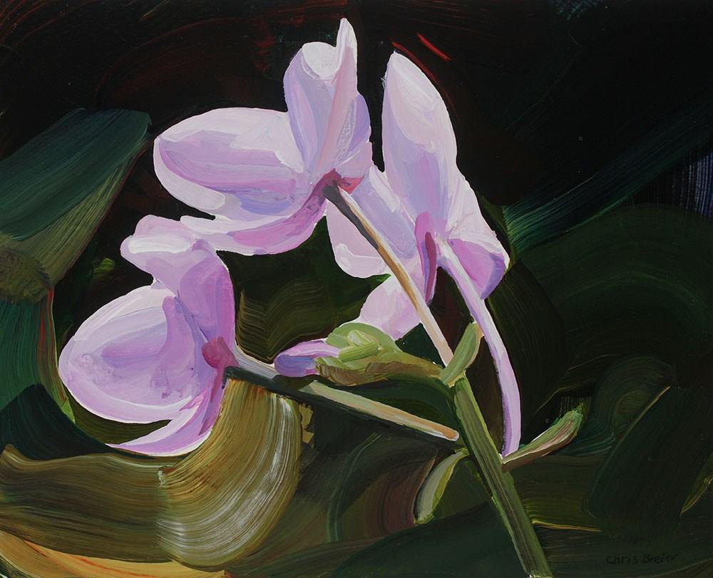 """""""Pink Flowers"""" original fine art by Chris  Breier"""