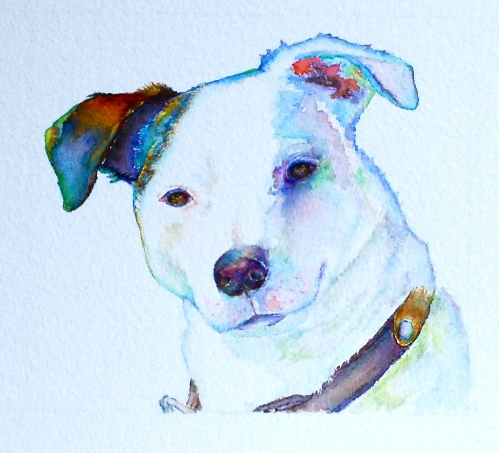 """Dex a/k/a Mini-Mike"" original fine art by Vicki Wood"
