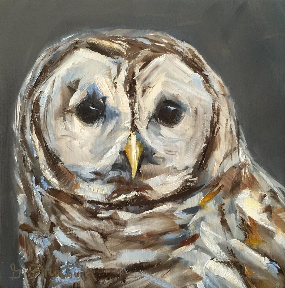 """Barred Owl"" original fine art by Gary Bruton"