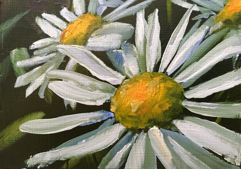 """Daisies,Three"" original fine art by Gary Bruton"