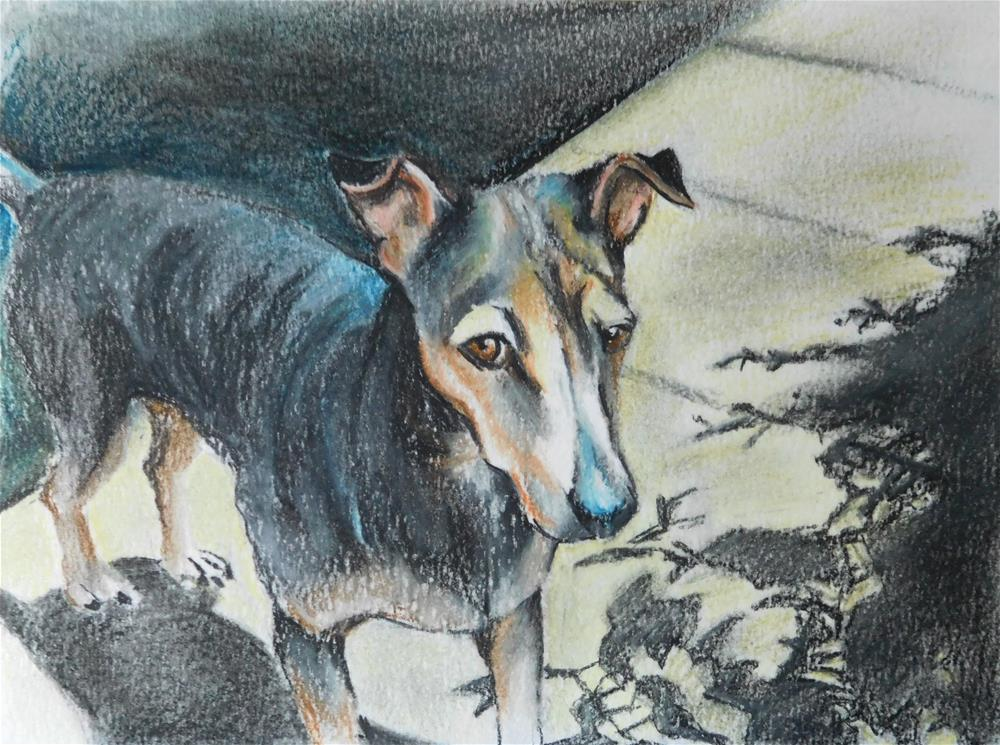 """Dog sketch 3"" original fine art by Daryl West"