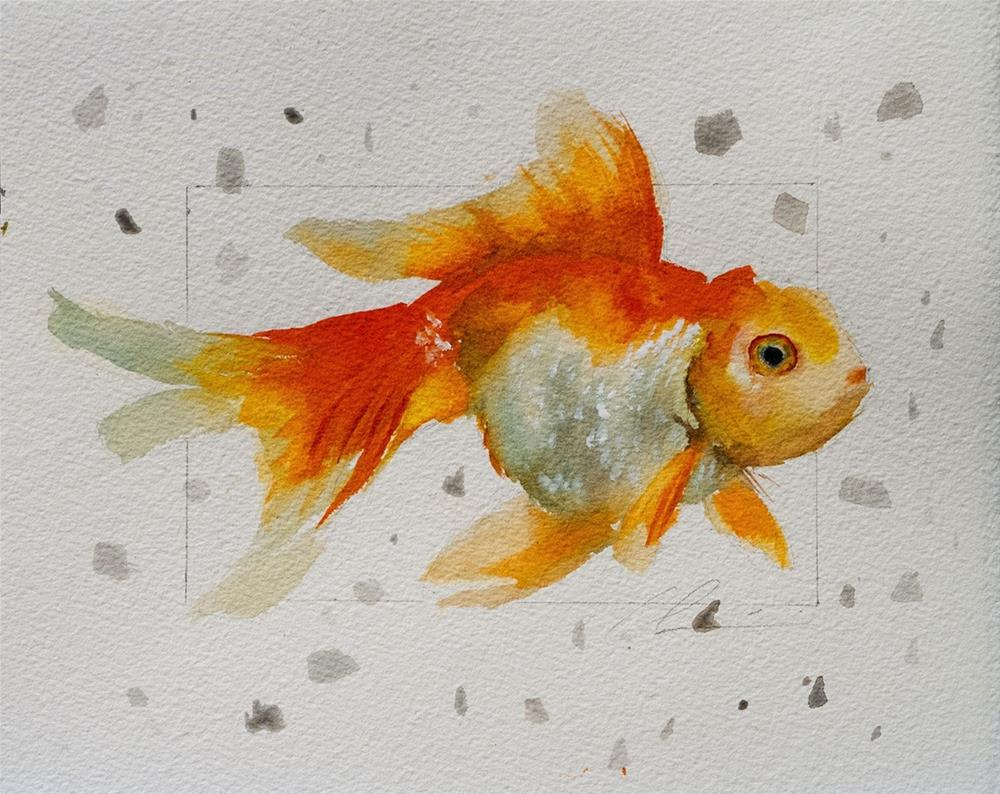"""Goldfish"" original fine art by Clair Hartmann"
