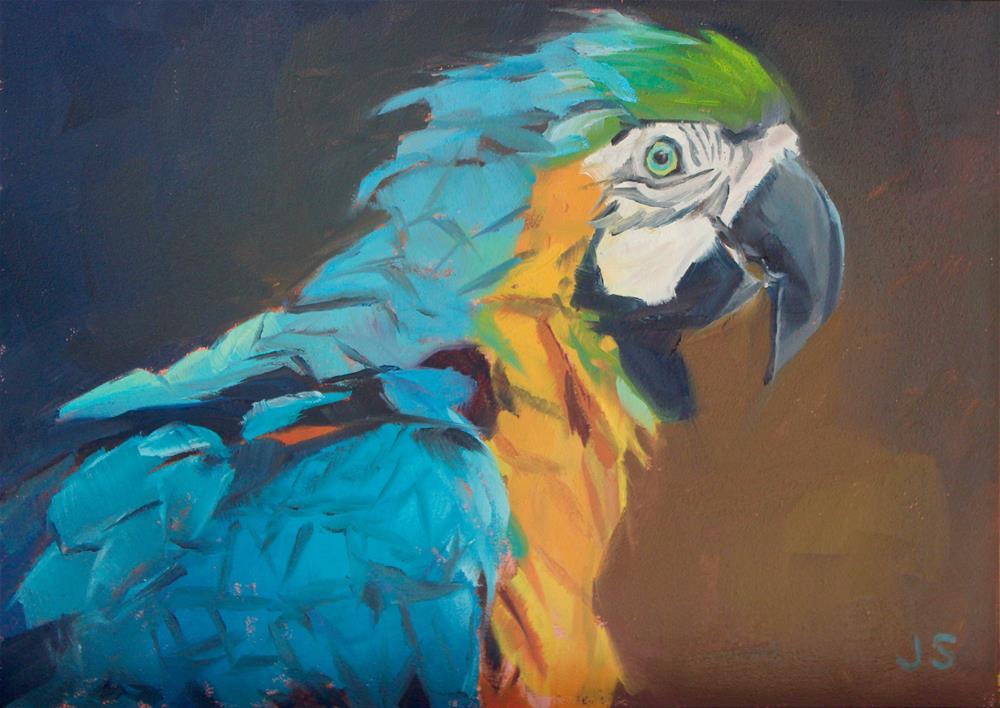 """Petey the Parrot"" original fine art by Jamie Stevens"