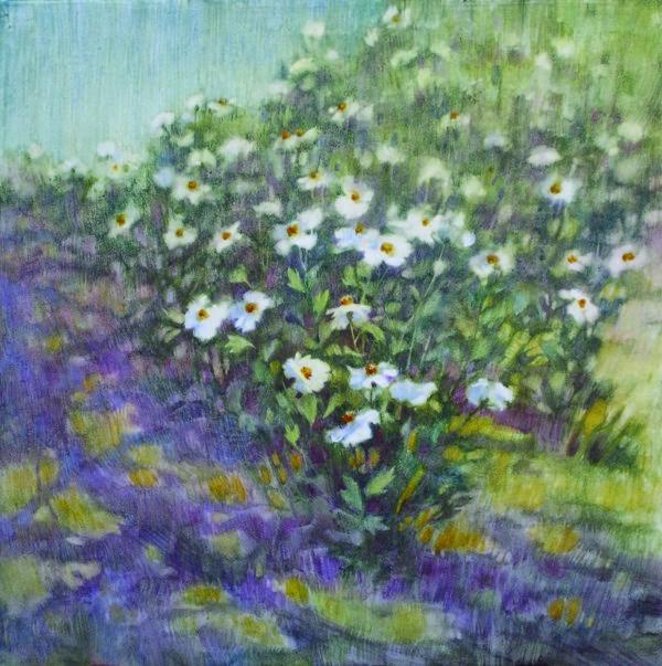 """""""Matilleja Poppies"""" original fine art by Ginger Pena"""