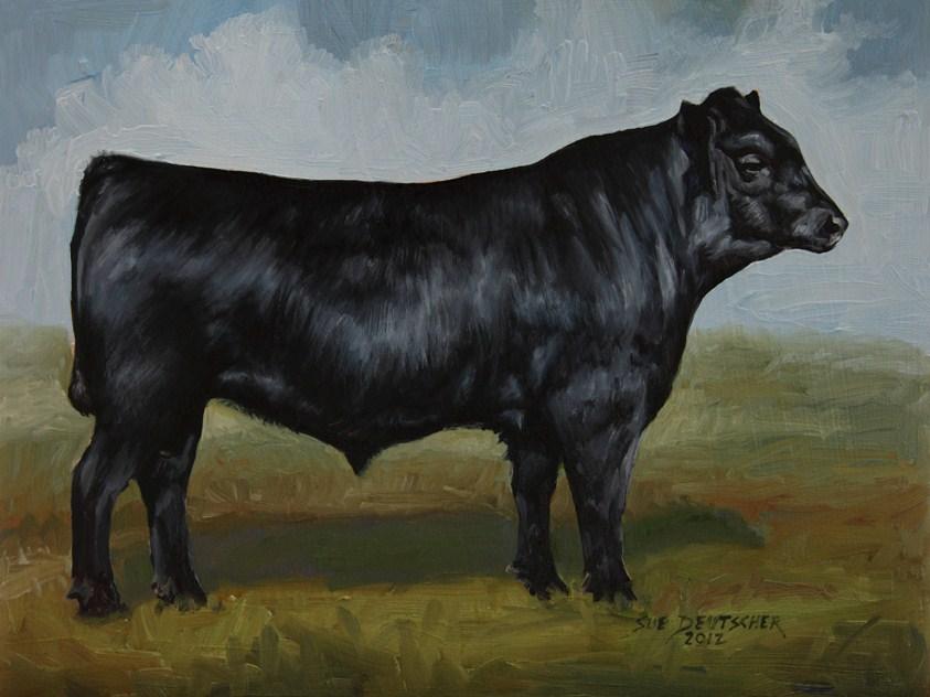 """""""Black Angus"""" original fine art by Sue Deutscher"""