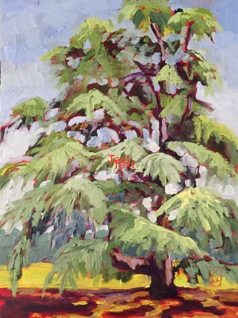 """Deodar Cedar at Sandhill"" original fine art by Lucinda Howe"