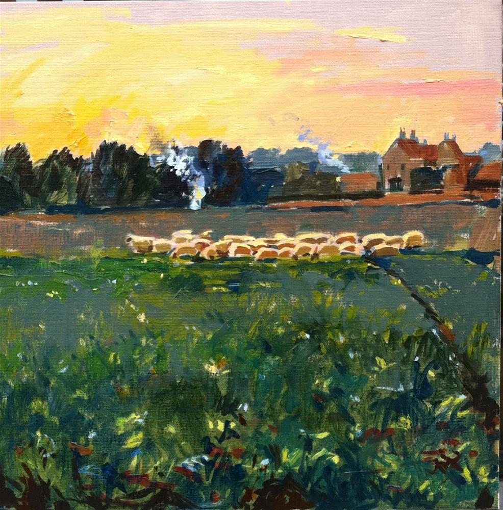 """Sheep at sunset"" original fine art by Haidee-Jo Summers ROI"