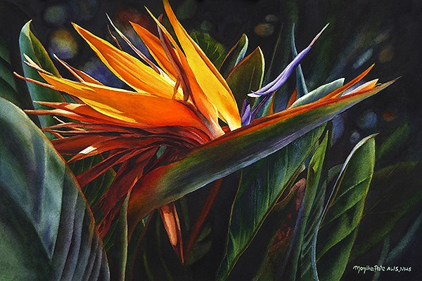 """Bird of Paradise"" original fine art by Monika Pate"