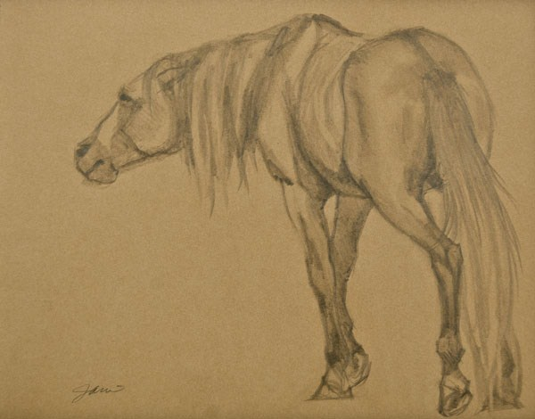 """Lead Stallion"" original fine art by Jani Freimann"