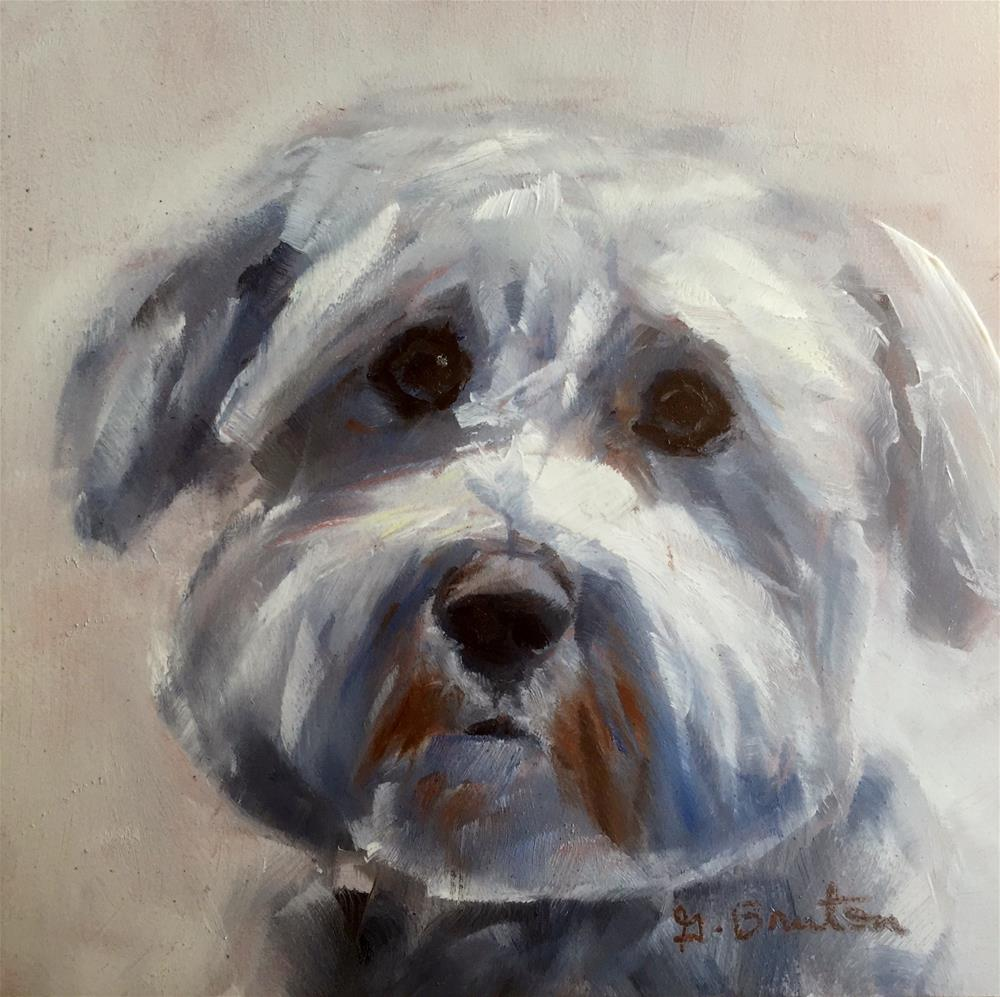 """Pooch"" original fine art by Gary Bruton"