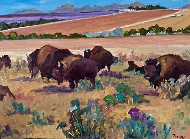 """Four Corners Buffalo"" original fine art by Liz Zornes"