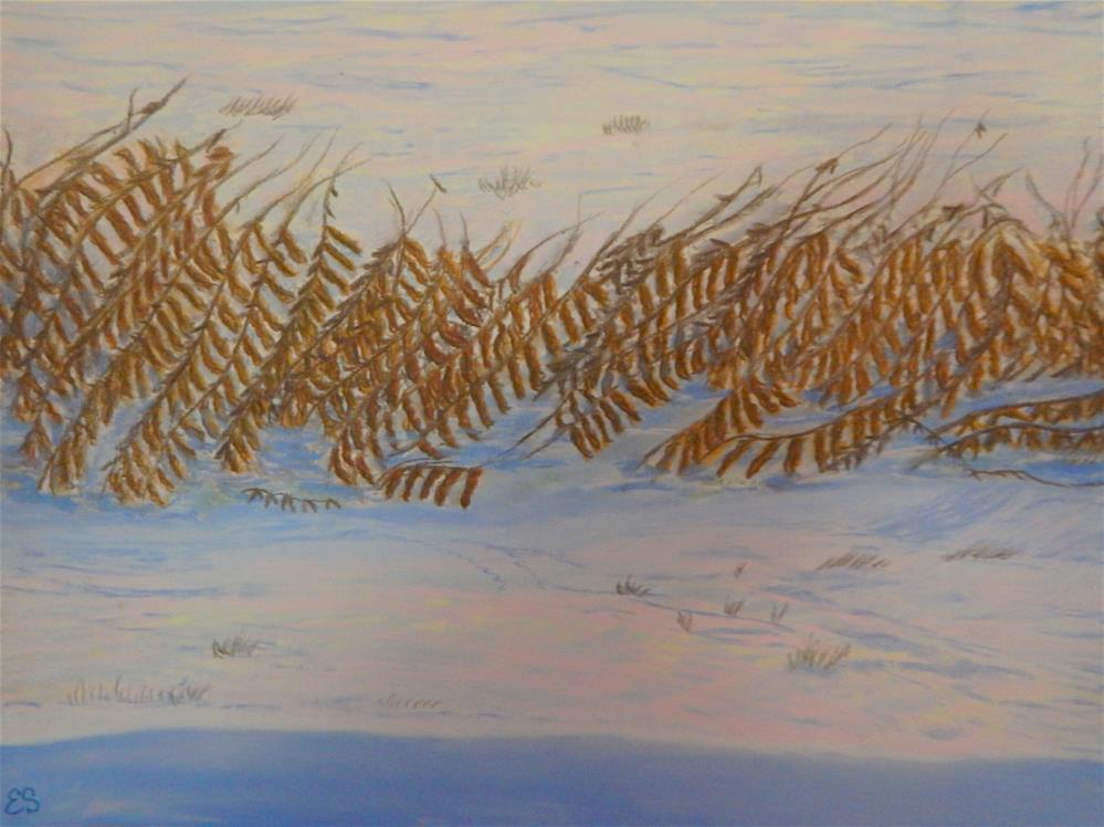 """""""Snow-drifted Soybeans at Dawn"""" original fine art by Elaine Shortall"""