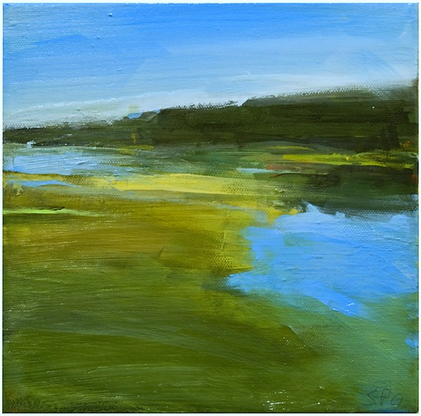 """Marshland 10.12"" original fine art by Steven Goodman"