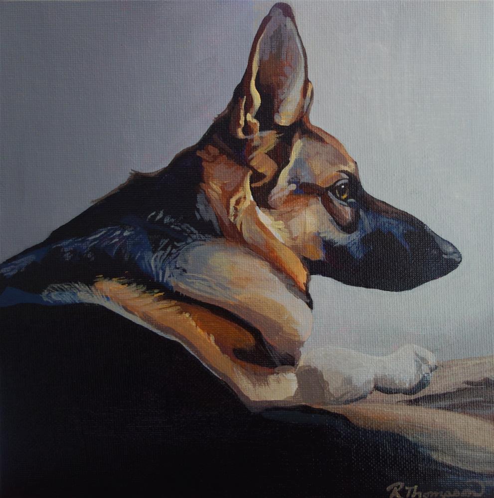 """German Shepherd"" original fine art by Rachel Thompson"