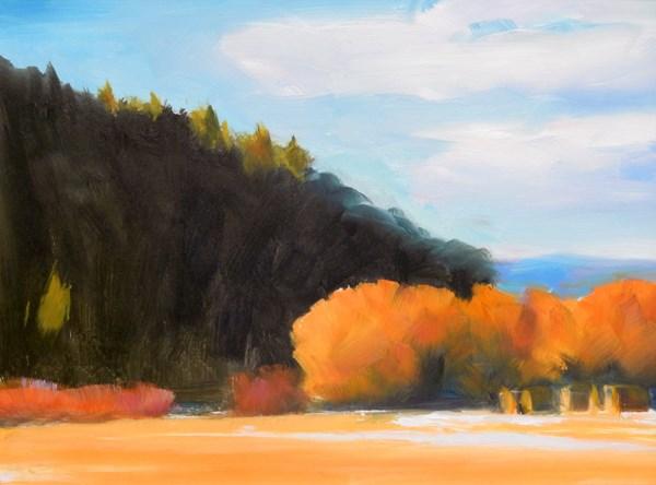 """""""Avon Willows"""" original fine art by Carolyn Caldwell"""