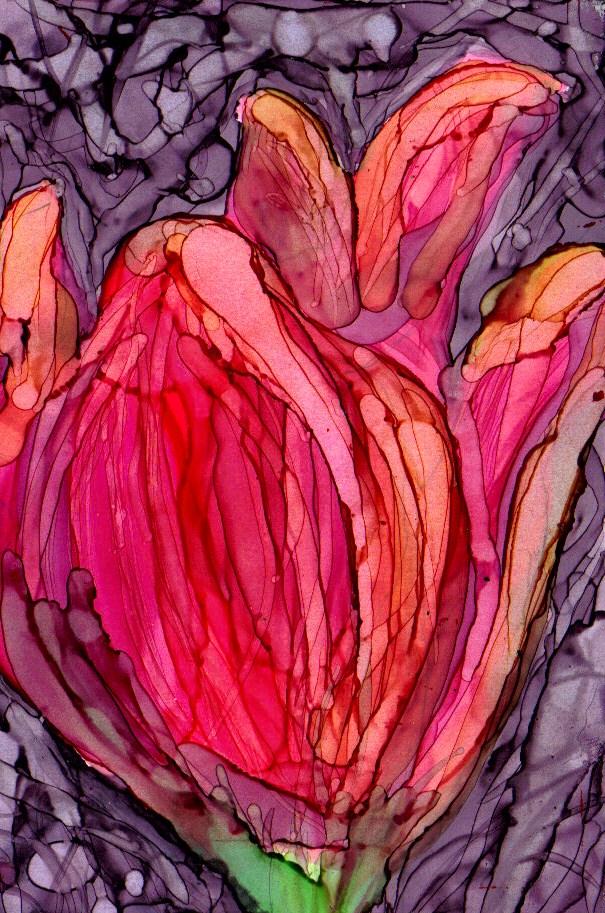 """tulip 1"" original fine art by Kristen Dukat"