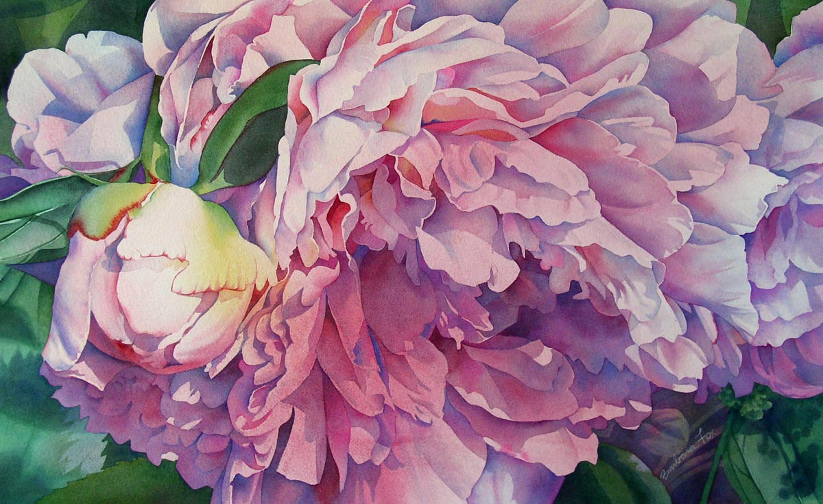 """AFTERNOON PEONY watercolor floral painting"" original fine art by Barbara Fox"