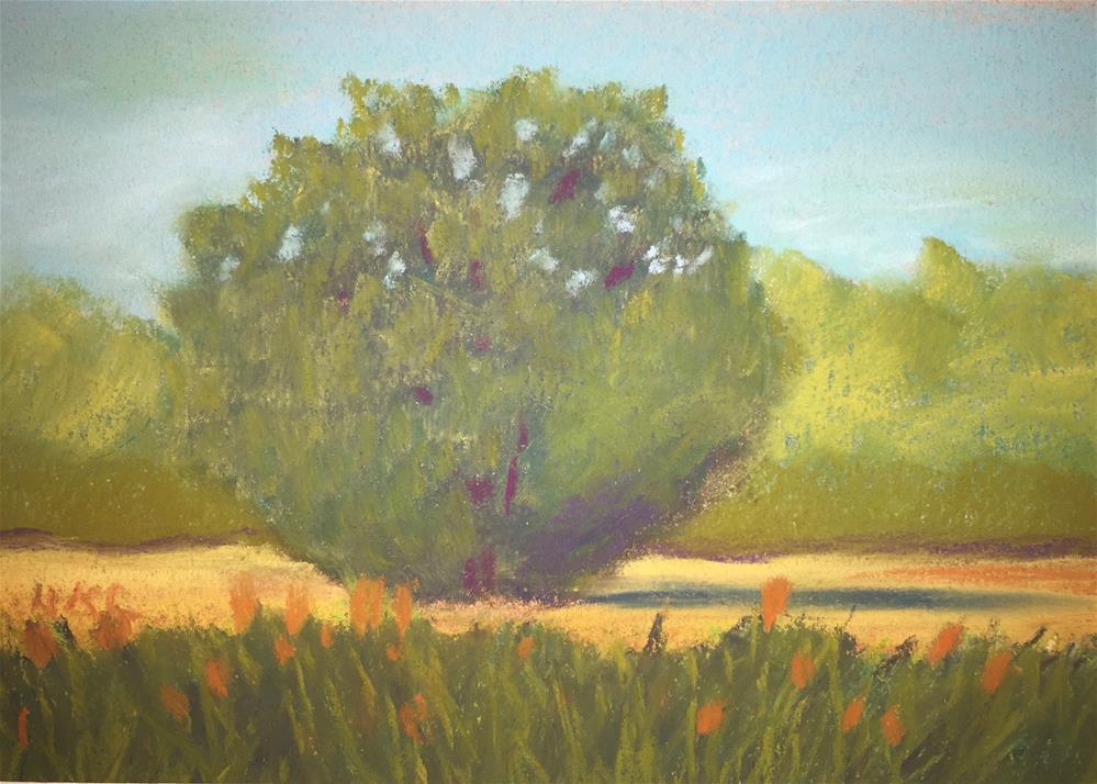 """Pecan Tree-A Study"" original fine art by Howard Clark"