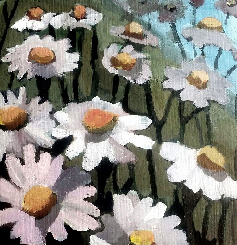 """Daisies on the Riverbed"" original fine art by Liz Maynes"