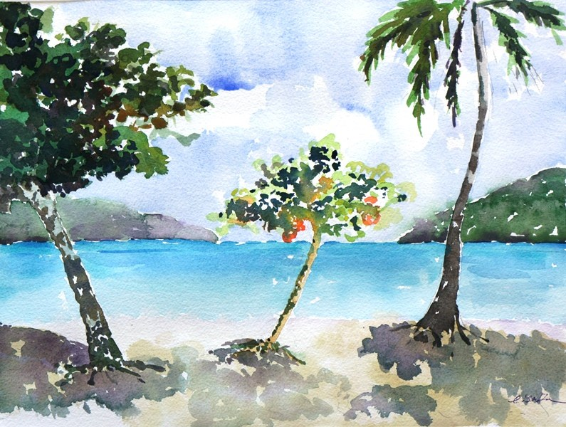 """Magen's Bay in St. Tromas"" original fine art by Lisa Fu"