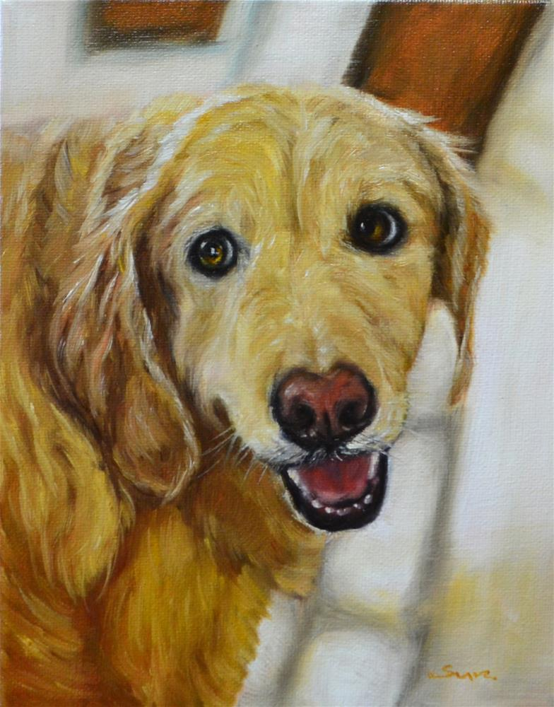 """Sweet golden retriver"" original fine art by Sun Sohovich"