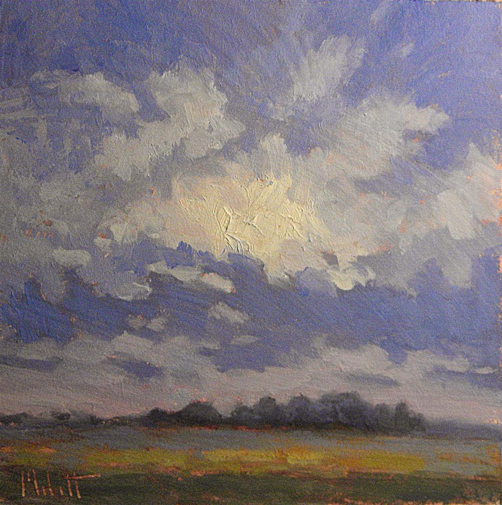 """Morning Skies & Cornfields Daily Oil Painting Heidi Malott"" original fine art by Heidi Malott"