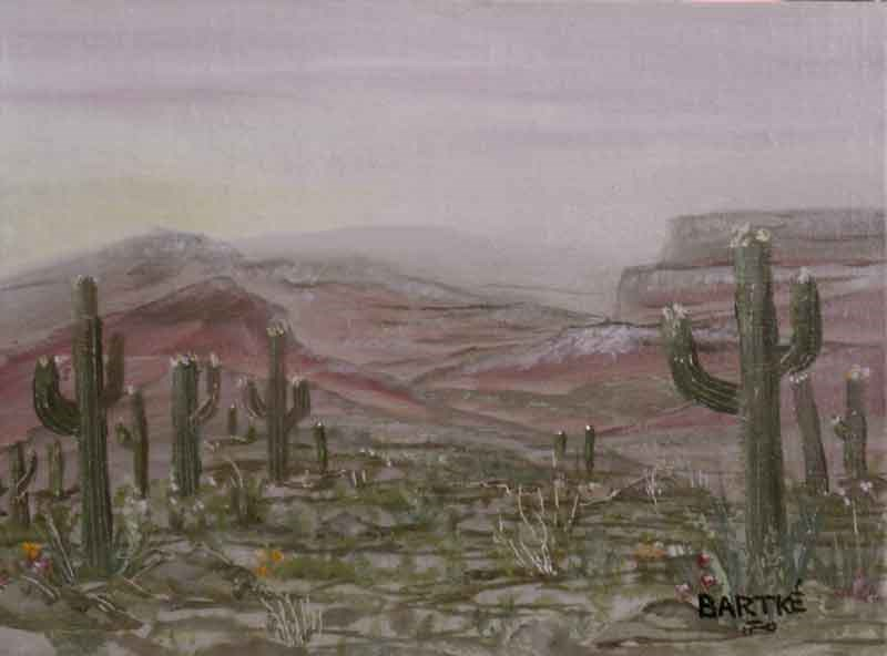 """Up Around Tucson"" original fine art by Janice Bartke Thompson"