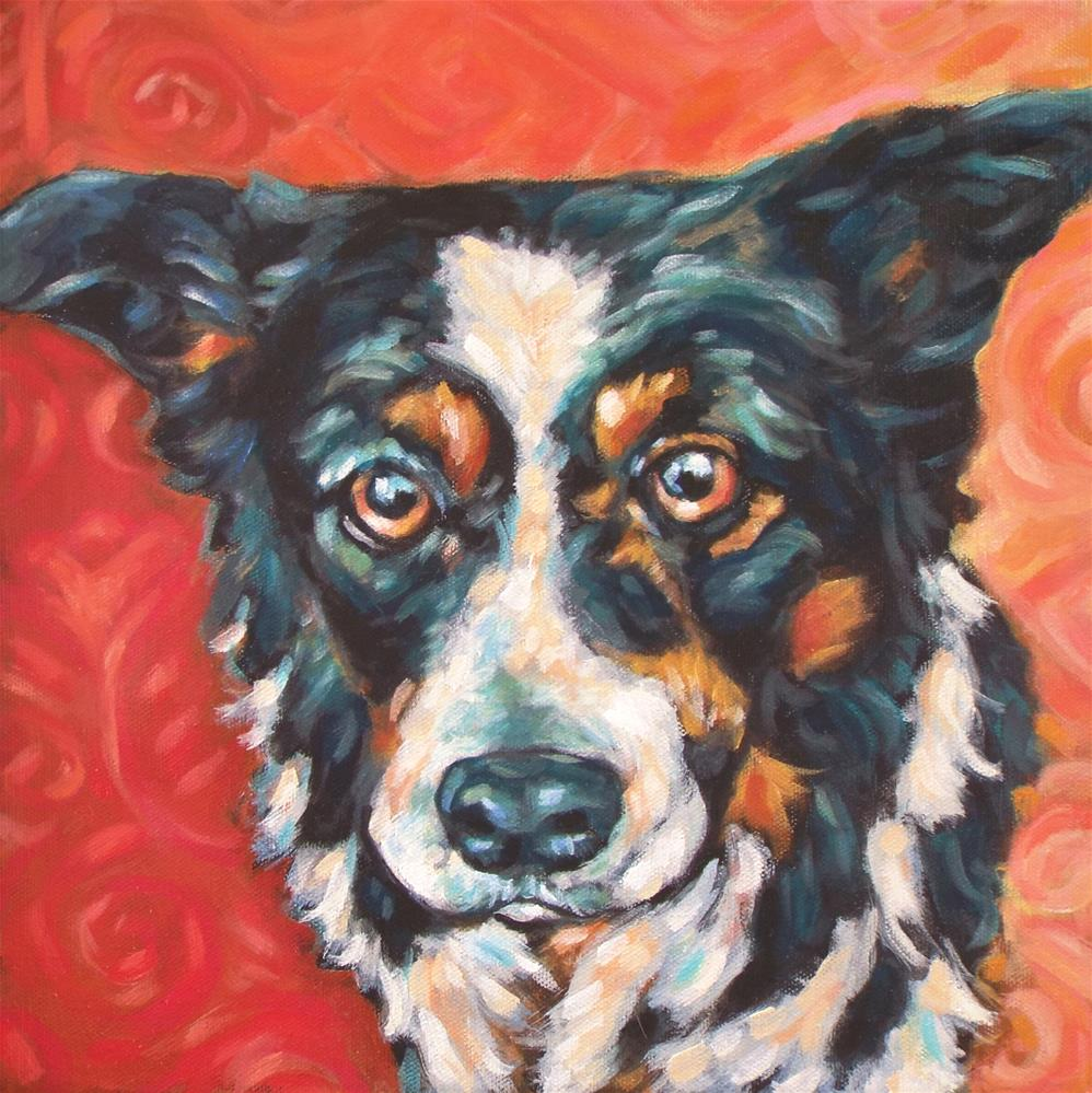 """Border Collie"" original fine art by Kathy Hiserman"