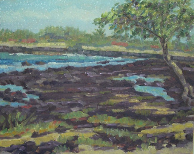"""Kaloko Ponds"" original fine art by Stan Chraminski"