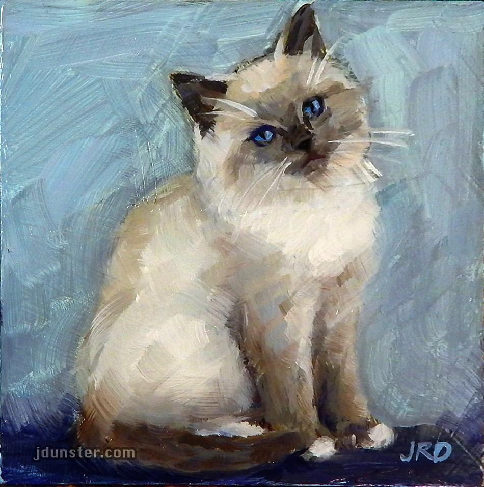 """Fluffy Siamese Kitten"" original fine art by J. Dunster"