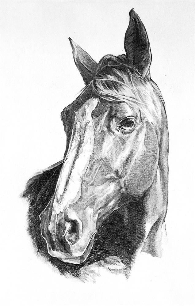 """Gracie"" original fine art by Stephen Ravenscraft"
