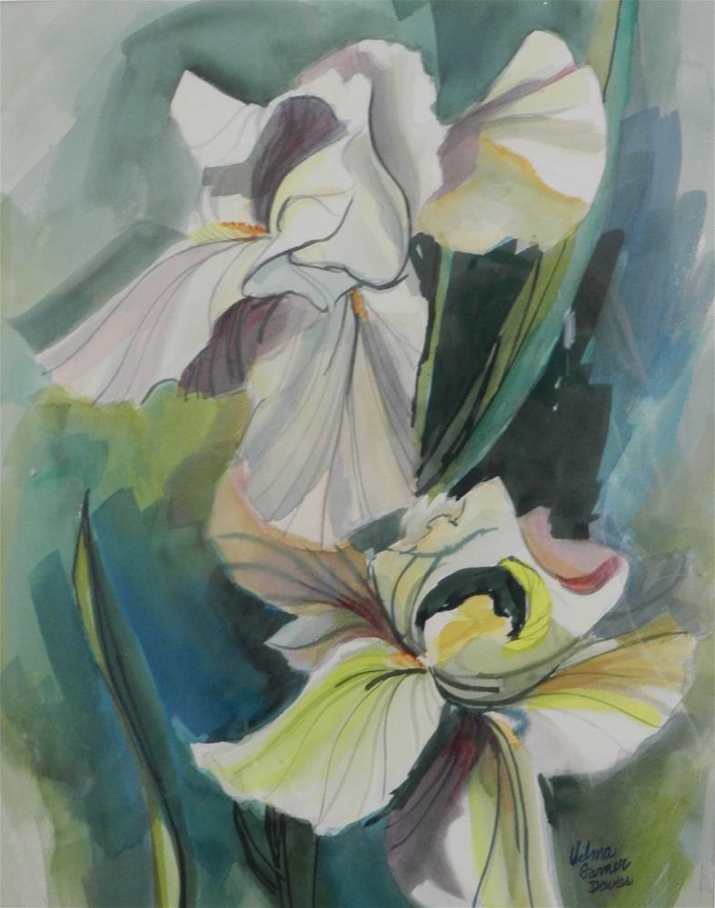 """Two White Iris"" original fine art by Velma Davies"