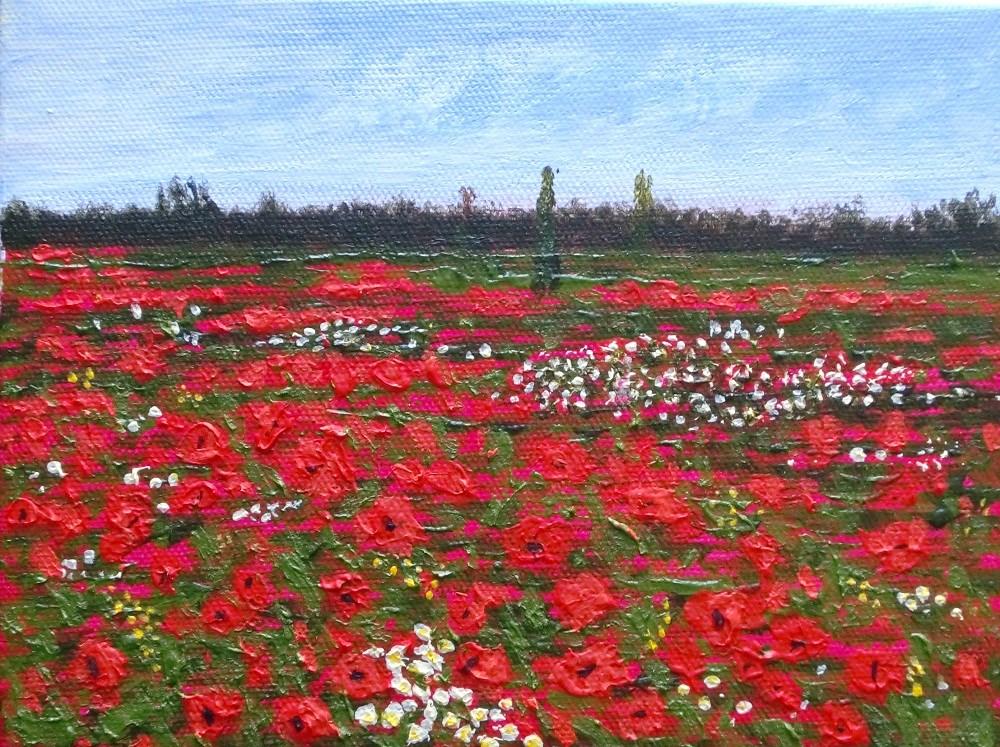 """""""Red Poppies"""" original fine art by karen richardson"""