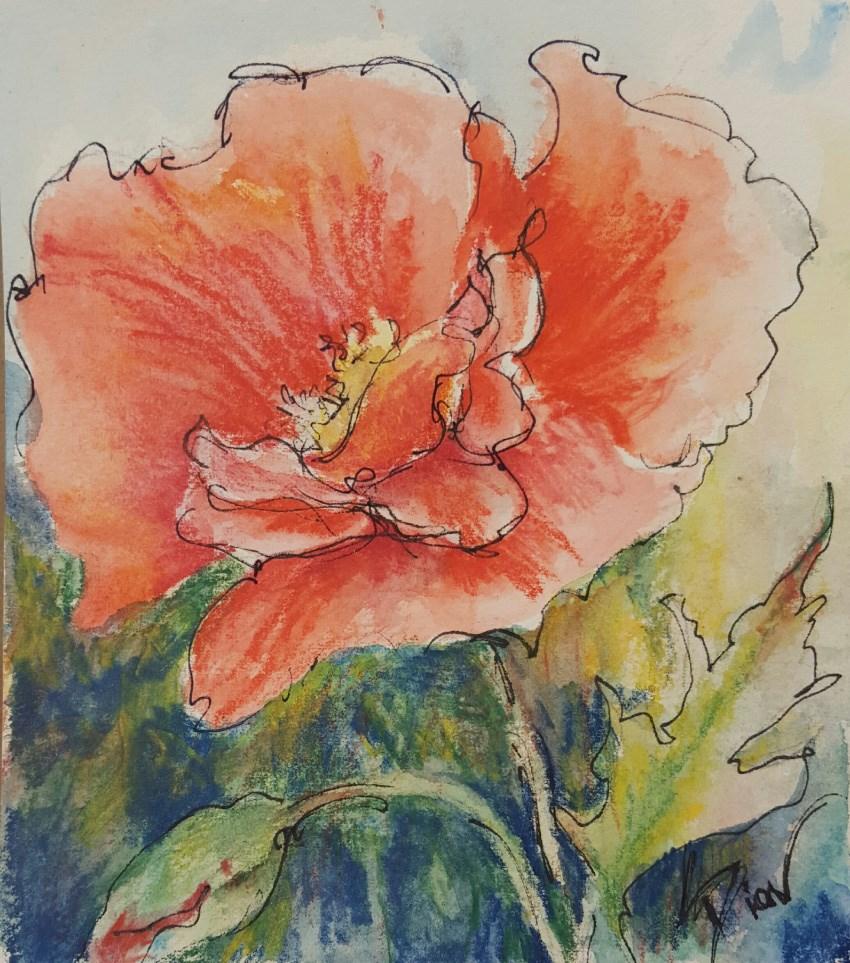 """Poppy Delight"" original fine art by Sue Dion"