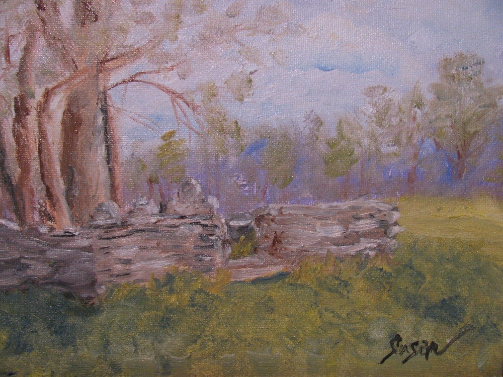 """Shade for Southern Souls"" original fine art by Susan Elizabeth Jones"