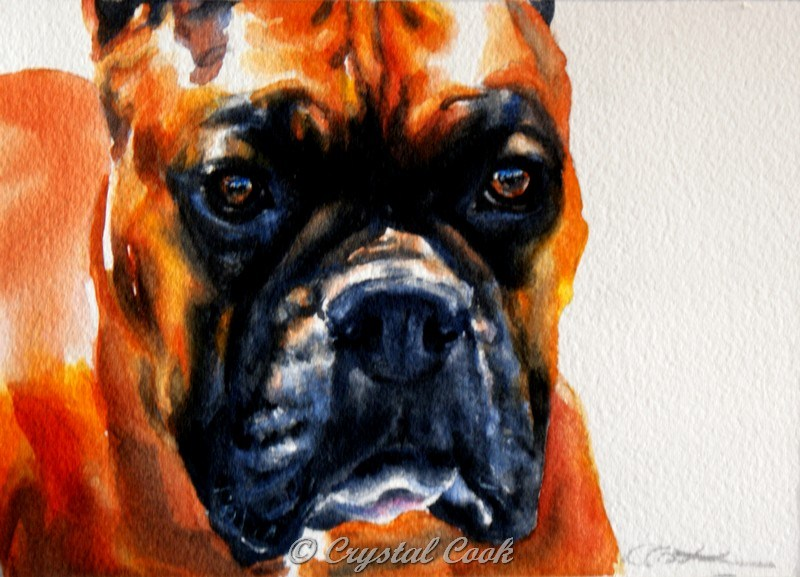 """A Good Dog"" original fine art by Crystal  Cook"