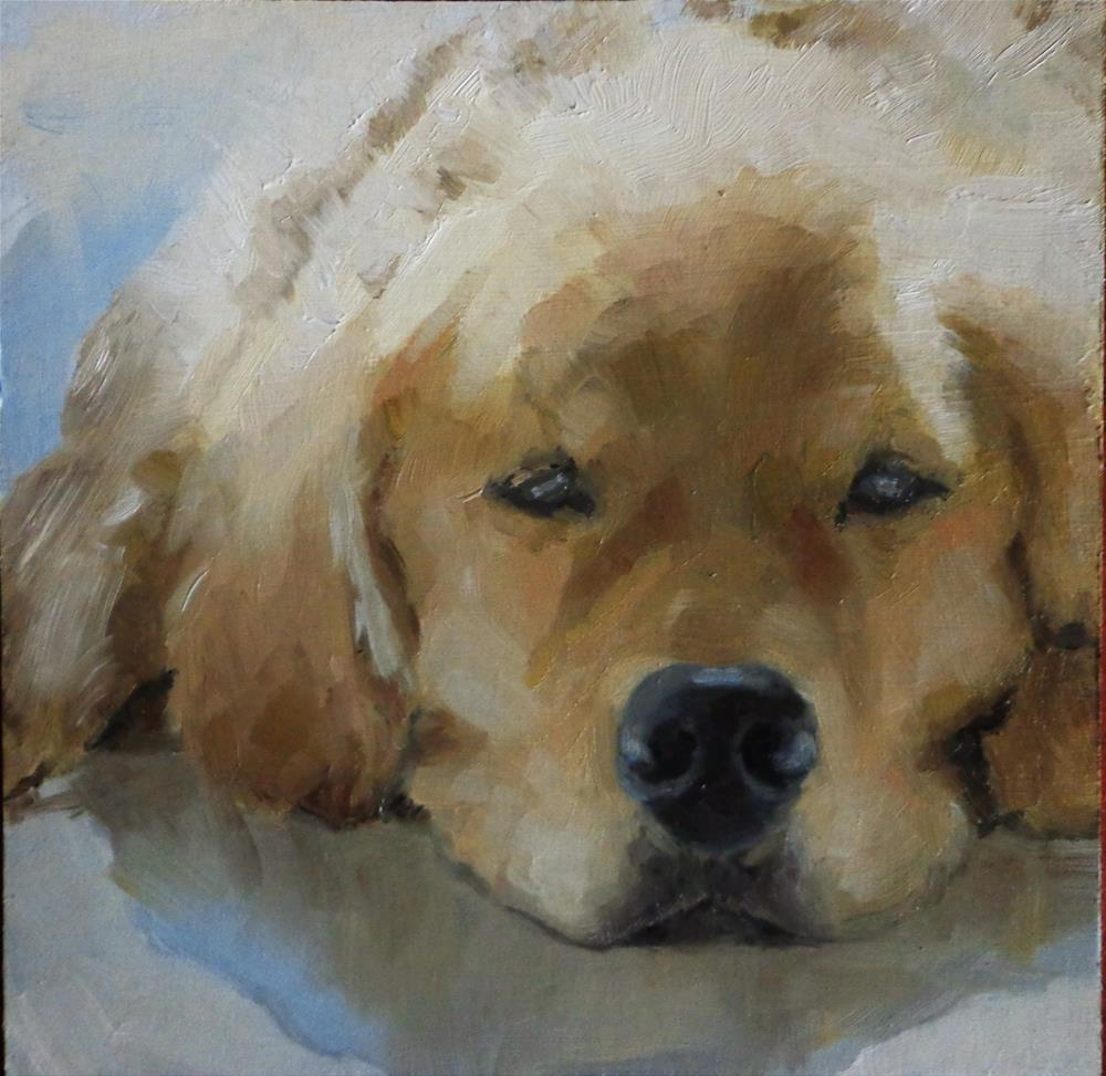 """Dog falling asleep"" original fine art by Maria Z."