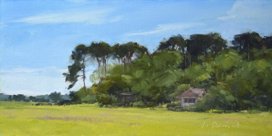 """Woodland Hideaway - Georgia Coast"" original fine art by Laurel Daniel"