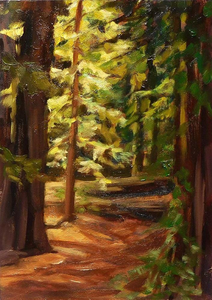 """Light In The Forest"" original fine art by Cietha Wilson"