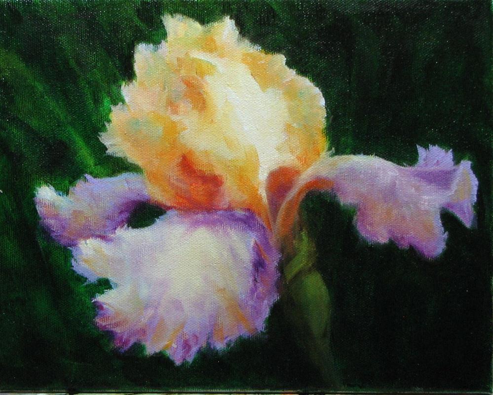 Rainbow Iris original fine art by Karen Rodgers