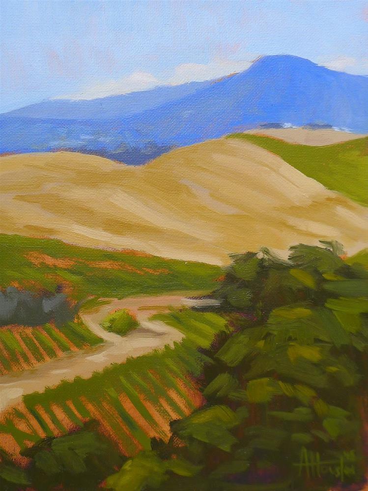 """Above the Vineyard"" original fine art by Adam Houston"